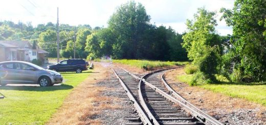 Result of herbicide spraying on the Guelph Junction Railway. There is a swath of brown vegetation on both sides of the tracks